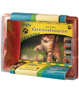 Jiffy Cat Grass Kit