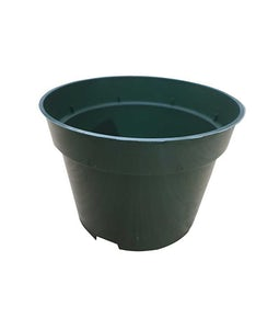 Plastic Green Azalea Pot 10 Inch Diameter