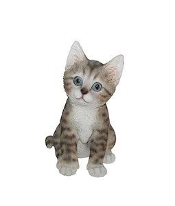 Border Concepts Tabby Kitten 7.75In