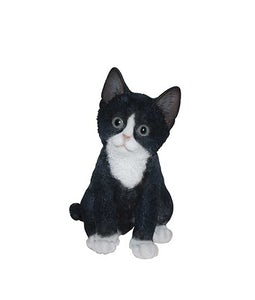 Border Concepts Black And White Kitten 7.75In