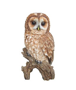 Border Concepts Tawny Owl 12.5In
