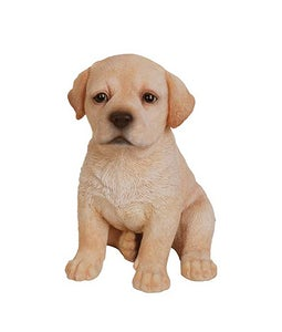 Border Concepts Golden Labrador Puppy 6.5inH