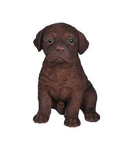 Border Concepts Chocolate Labrador Puppy 6.5inH