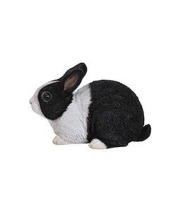 Border Concepts Sitting Dutch Rabbit 9.5In