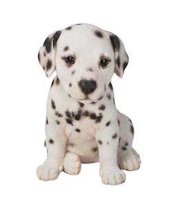 Border Concepts Dalmation Puppy 6.5inH