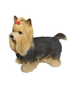 Border Concepts Yorkshire Terrier Small 7.75inL