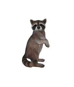 Border Concepts Raccoon 19In