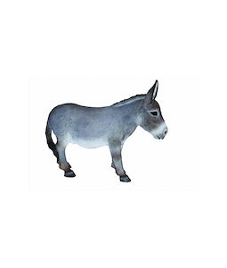 Border Concepts Adult Donkey 15.25In