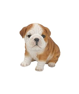 Border Concepts Bulldog Puppy 6.5inH