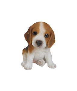 Border Concepts Beagle Puppy 6In