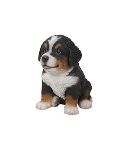 Border Concepts Bernese Mountain Puppy 6.25in H