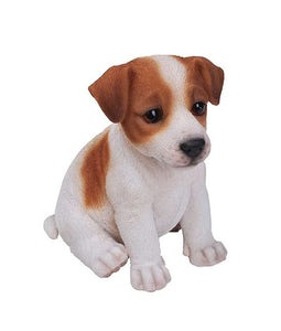 Border Concepts Jack Russell Puppy 6.5In