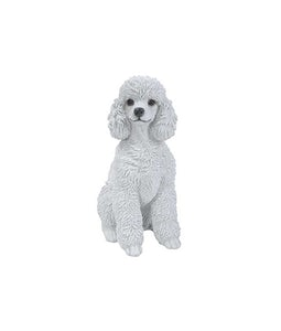 Border Concepts Toy Poodle White 12.5inH