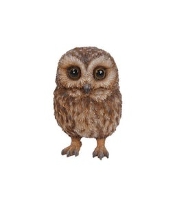 Border Concepts Baby Tawny Owl 5In