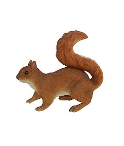 Border Concepts Red Squirrel 11.75