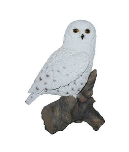 Border Concepts Snowy Owl 13In