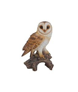 Border Concepts Barn Owl 14.25In