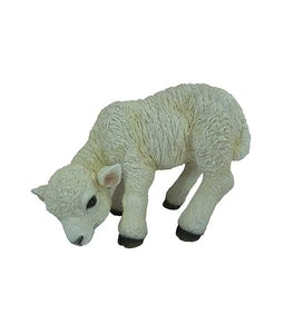 Border Concepts Standing Lamb 12.25In