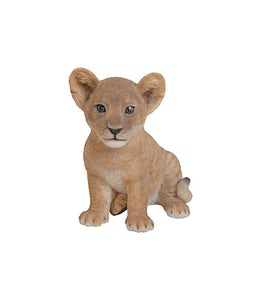 Border Concepts Sitting Lion Cub 9In