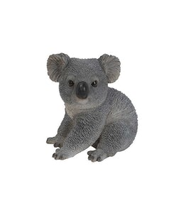 Border Concepts Koala Bear Cub 5In