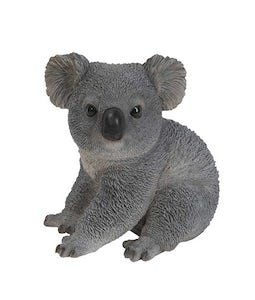 Border Concepts Koala Bear 8.75In