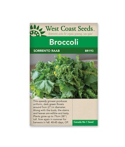 West Coast Seeds Sorrento Broccoli