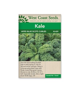 West Coast Seeds Kale Vates Blue Curled Scotch