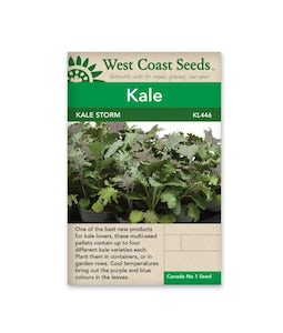 West Coast Seeds Kale Storm