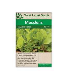 West Coast Seeds Mescluns Saladini Blend