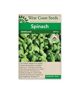 West Coast Seeds Spinach Renegade