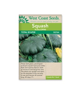 West Coast Seeds Squash Total Eclipse