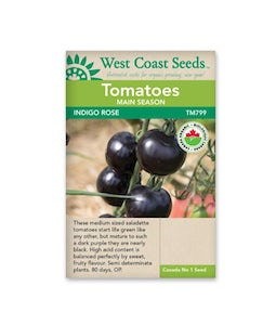 West Coast Seeds Tomatoes Indigo Rose Organic Certified