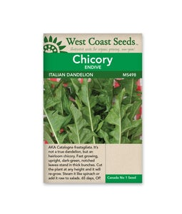 West Coast Seeds Chicory Italian Dandelion