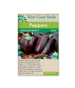 West Coast Seeds Pepper Chocolate Beauty