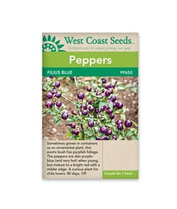 West Coast Seeds Pepper Filius Blue