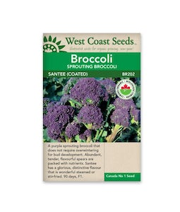 WEST COAST SEEDS BROCCOLI SANTEE CERTIFIED ORGANIC