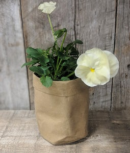 WASHABLE KRAFT PAPER PLANTER, SMALL